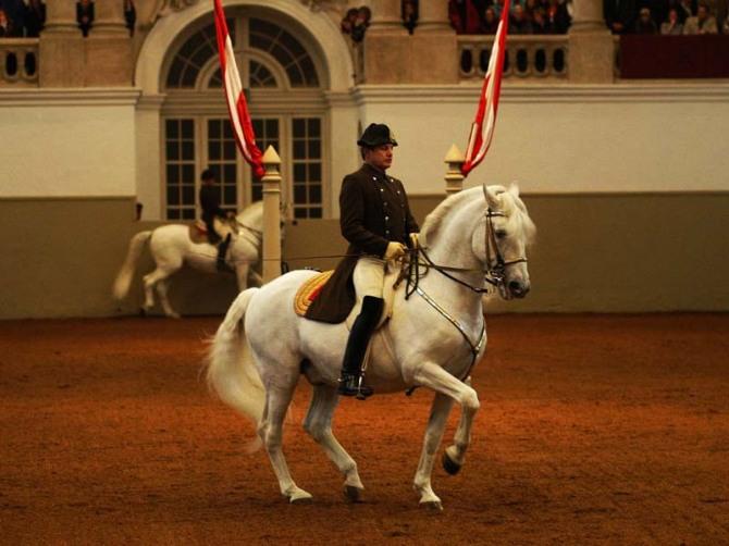 Ecole Espagnole d'Equitation de Vienne