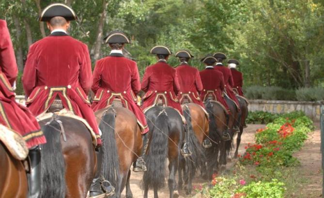 Ecole Portugaise d'Art Equestre.